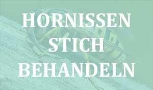 Hornissenstich behandeln