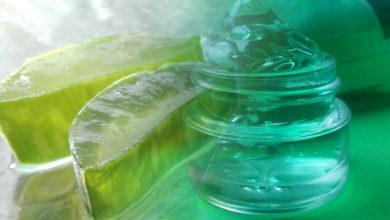 Aloe Vera gegen Pickel selber machen. So bekommst Du das Gel der Blätter.